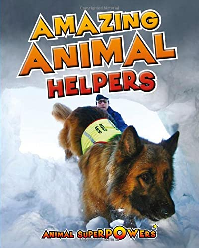 9781406241242: Amazing Animal Helpers (Animal Superpowers)