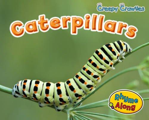 9781406241334: Caterpillars (Creepy Crawlies)