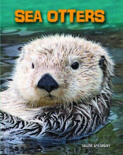 9781406250121: Sea Otters (InfoSearch: Living in the Wild: Sea Mammals)