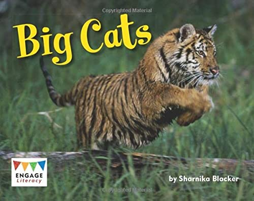 9781406258004: Big Cats (Engage Literacy: Engage Literacy Green)