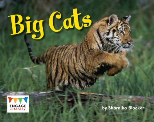 9781406258189: Big Cats (Engage Literacy: Engage Literacy Green)