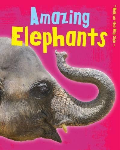 AMAZING ELEPHANTS: GUILLAIN, CHARLOTTE