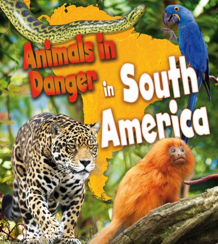 9781406262179: Animals in Danger in South America (Young Explorer)