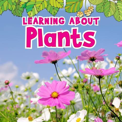 9781406266085: Learning about Plants (Natural World)