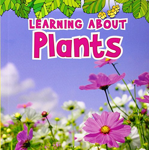 9781406266139: Learning about Plants (Natural World)