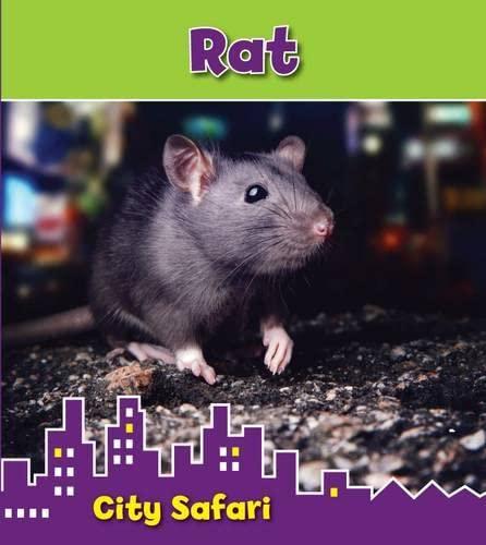 Rat: City Safari: Thomas, Isabel