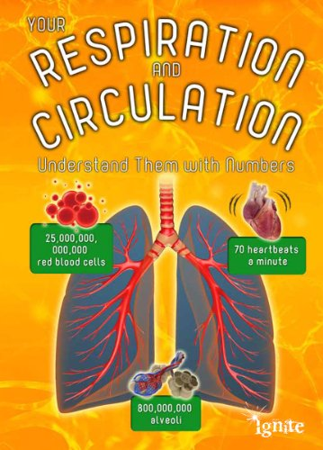 Your Respiration and Circulation (Your Body by Numbers): Melanie Waldron