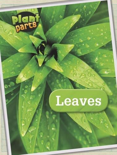 9781406274844: Leaves (Plant Parts)