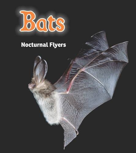 Bats: Nocturnal Flyers (Night Safari): Rissman, Rebecca