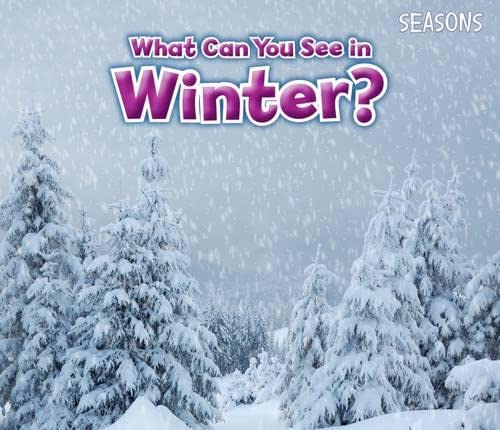 9781406283297: What Can You See In Winter? (Seasons)