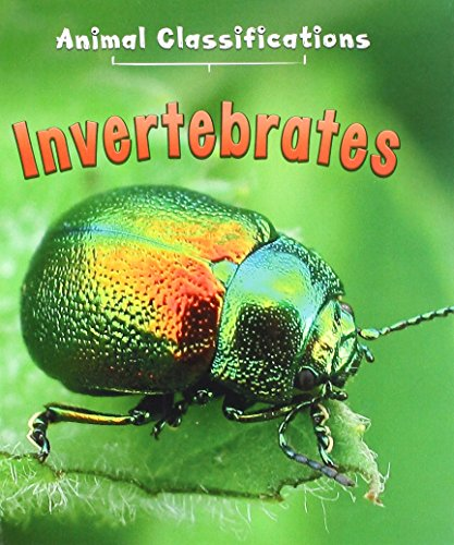 9781406287394: Invertebrates (First Library: Animal Classification)
