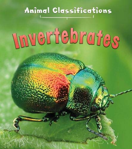 9781406287462: Invertebrates (First Library: Animal Classification)