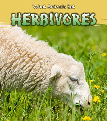 9781406289152: Herbivores (Read and Learn: What Animals Eat)
