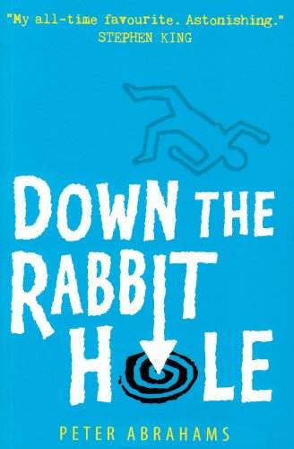9781406300284: Down the Rabbit Hole: An Echo Falls Mystery
