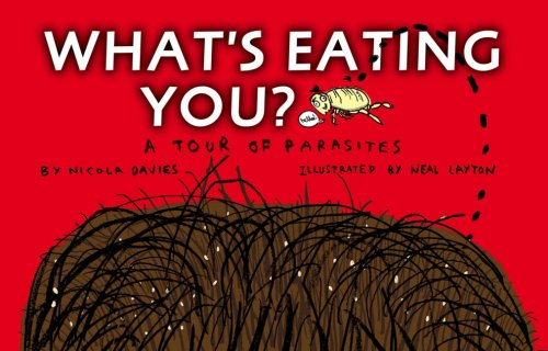 What's Eating You?: Nicola Davies