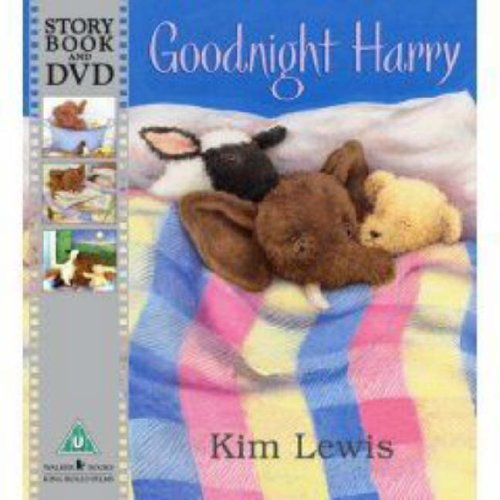 9781406307542: Goodnight Harry Book And Toy Pack
