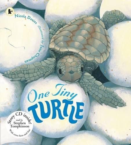 9781406311976: One Tiny Turtle (Nature Storybooks)