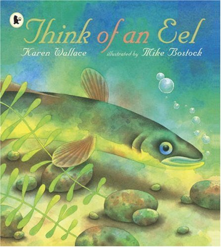 9781406312010: Think Of An Eel Library Edition