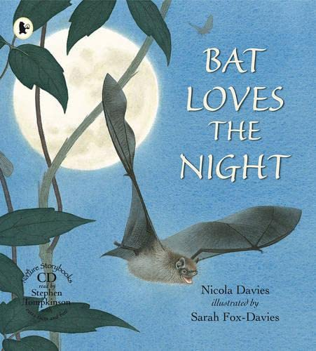 9781406312744: Bat Loves The Night Library Edition