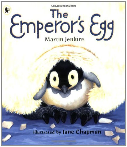 9781406313017: The Emperor's Egg (Nature Storybooks)
