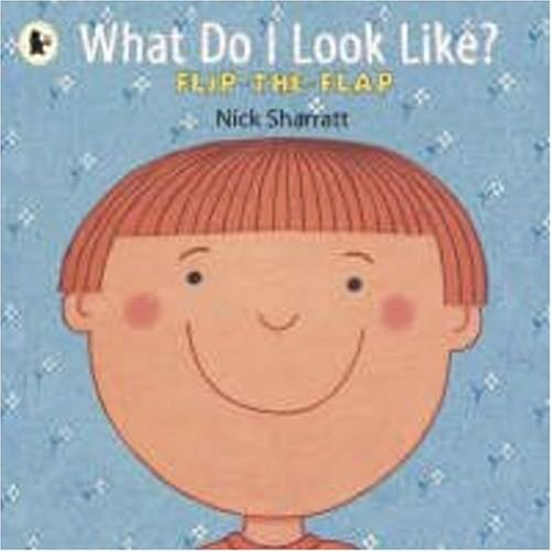 9781406316766: What Do I Look Like