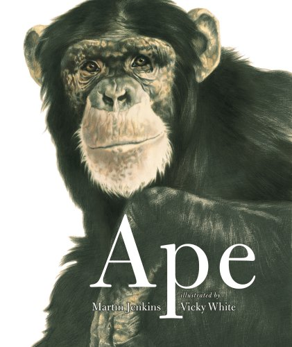 9781406319293: Ape