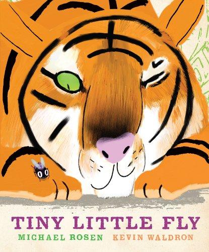 9781406330977: Tiny Little Fly