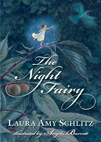 9781406331387: The Night Fairy
