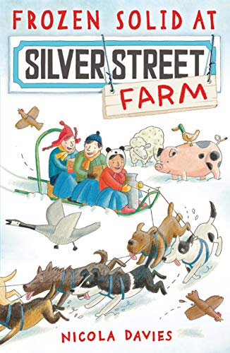 9781406337839: Frozen Solid at Silver Street Farm