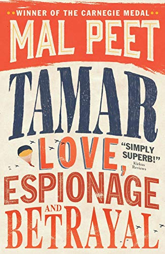 9781406339130: Tamar: A Story of Secrecy and Survival
