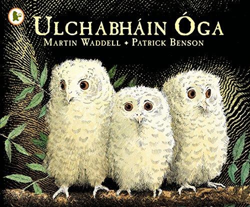 9781406341126: Ulchabhain Oga (Owl Babies)