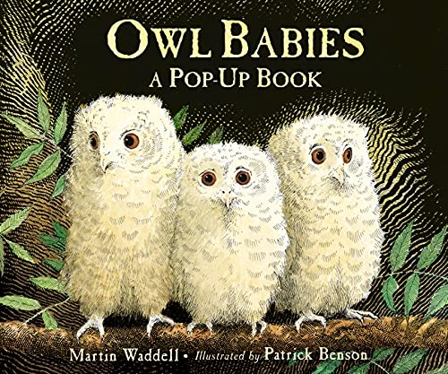 9781406352344: Owl Babies