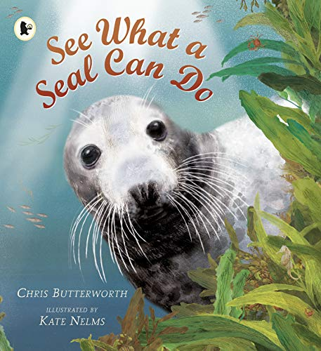 See What a Seal Can Do (Nature Storybooks): Butterworth, Christine