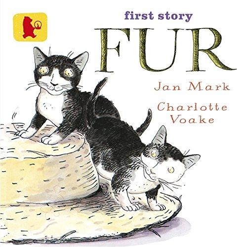 9781406353969: Fur (Baby Walker)