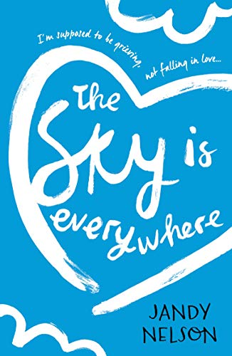 9781406354386: The Sky Is Everywhere