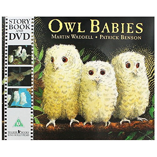 9781406359077: Owl Babies