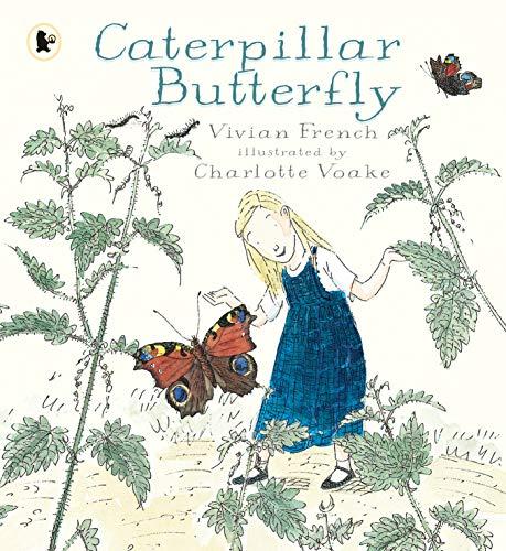 9781406365436: Caterpillar Butterfly