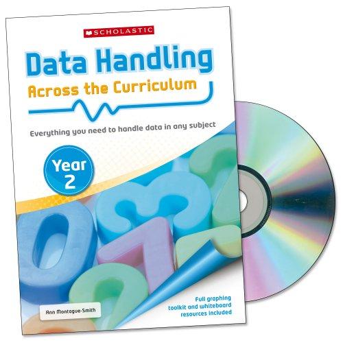 9781407125206: Year 2: Teacher's Resource Book (Data Handling Across Curriculum)