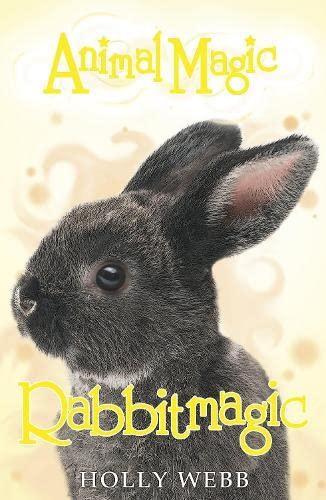 Rabbitmagic (Animal Magic): Webb, Holly