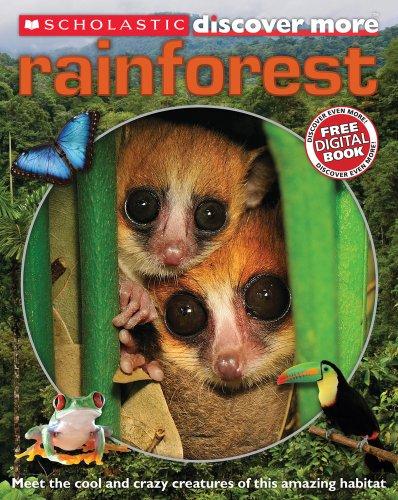 9781407136578: Rainforests