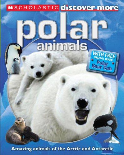 9781407142494: Polar Animals (Discover More)