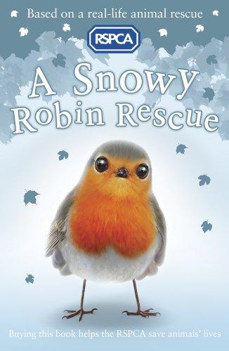 9781407147536: A Snowy Robin Rescue