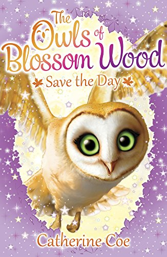 9781407156675: The Owls of Blossom Wood: Save the Day: 1