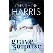 9781407227702: Grave Surprise