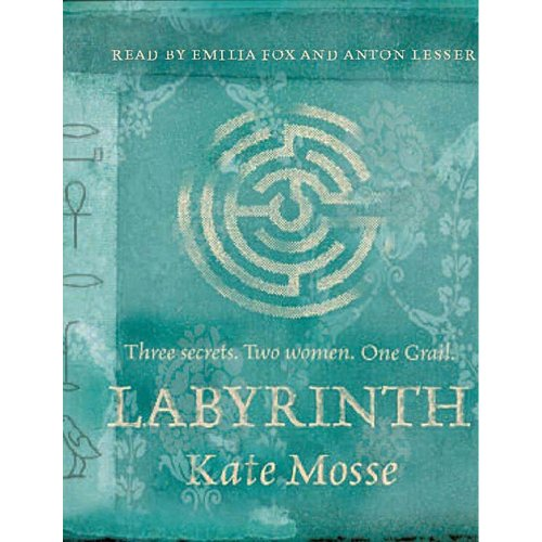 9781407238821: Labyrinth