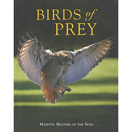 9781407515946: Birds of Prey