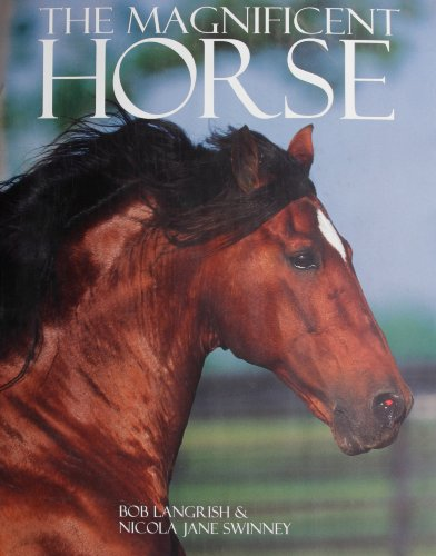 The Magnificent Horse (Coffee Table): Langrish, Bob