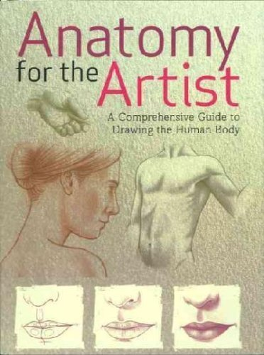 9781407516332: Anatomy for the Artist