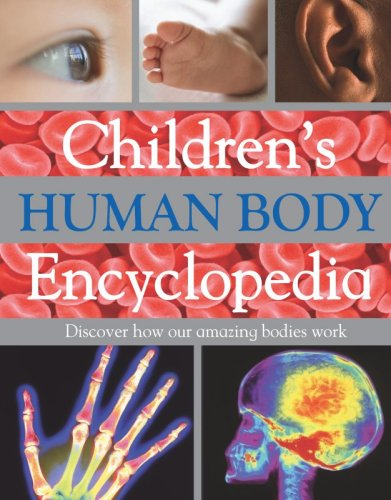 9781407517568: Children's Human Body