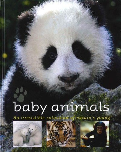 9781407517704: Baby Animals: An Irresistible Collection of Nature's Young